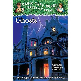 Geister (magische Baumhaus Research Guides (Pb))