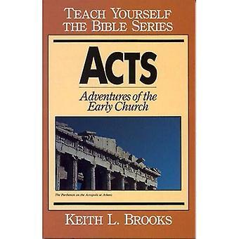 Acts: Avonturen van de vroege kerk (Teach Yourself de Bijbel)