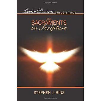 Lectio Divina bibelstudium: sakramenten i skriften (Lectio Divina Bibelstudier)