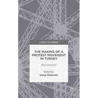 Het maken van een protestbeweging in Turkije Occupygezi door Ozkirimli & Umut