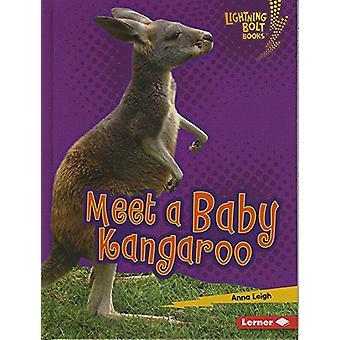 Meet a Baby Kangaroo by Anna Leigh - 9781512433845 Book