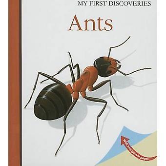 Ants by Rene Mettler - Rene Mettler - Penelope Stanley-Baker - 978185