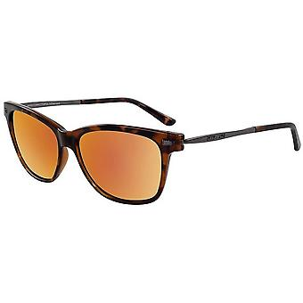 Dirty Dog Jackal Sunglasses - Brown Tort/Gold