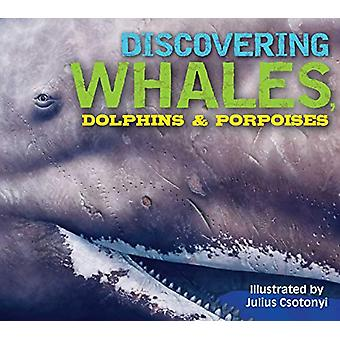 Discovering Whales - Dolphins and Porpoises by Kelly Gauthier - 97816