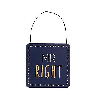 Mr Right Humorous Hanging Plaque - Gift Item