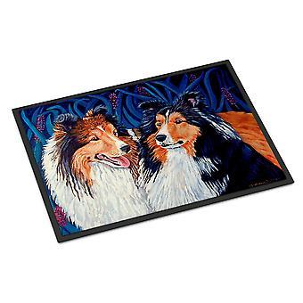 Caroline's Treasures 7508MAT Sheltie Zerbino esterno interno, 18 x 27, Multicolor