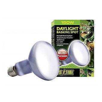 Exo-Terra Sun Glo Neodymium Basking Spot Lamps - 150 Watts
