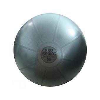 اللياقة البدنية جنون 500Kg الكرة السويسرية لاستوديو جيم ممارسة اللياقة البدنية التدريب 55cm