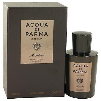 Acqua Di Parma Colonia Ambra Eau De Cologne Concentrate Spray By Acqua Di Parma 3.3 oz Eau De Cologne Concentrate Spray