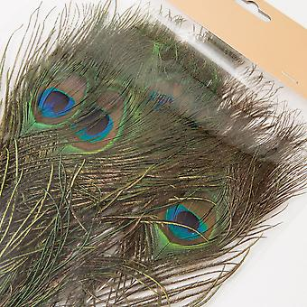 Peacock Feathers 18 Pieces Nature 25-30 cm