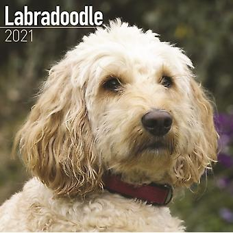 Labradoodle 2021 Wall Calendar by Created by Avonside Publishing Ltd