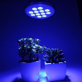 Led Grow Plant Light Bulb