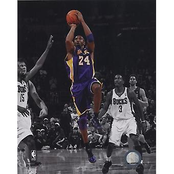 Kobe Bryant 2010-11 Spotlight Action Sports Photo (8 x 10)