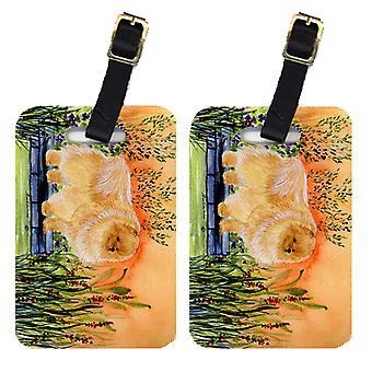 Carolines Treasures  SS8161BT Pair of 2 Pomeranian Luggage Tags