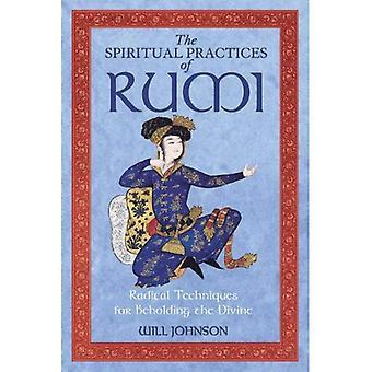 Spirituele praktijken van Rumi: radicale technieken voor het aanschouwen van het goddelijke