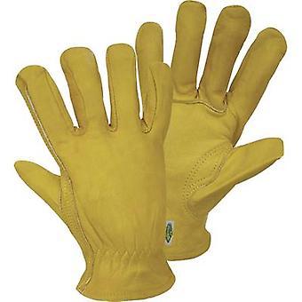 FerdyF. Conductor Garten 1610 Full-grain leather Work glove Size (gloves): 9, L CAT I 1 Pair