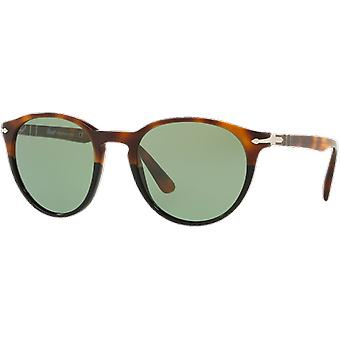 Persol 3152S escala/Brown verde