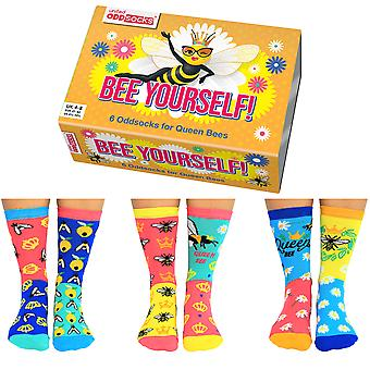 United Oddsocks Women's Bee Yourself Socks Gift Set