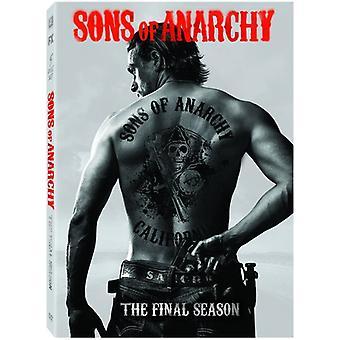 Sons anarkiaa: kausi 7 [DVD] USA tuonti