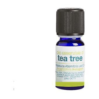 Organic tea tree essential oil 10 ml of oil