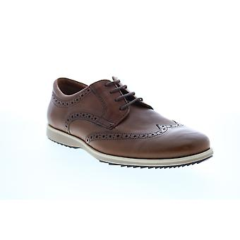 Geox U Blainey Mens Brown Leather Oxfords & Lace Ups Wingtip & Brogue Chaussures