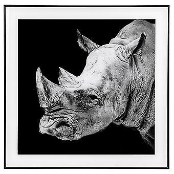 Decor Picture Square Large Rhino