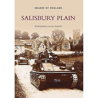 Piana di Salisbury (fotografie d'archivio)
