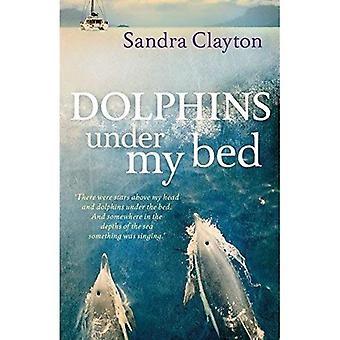 Golfinhos debaixo da minha cama