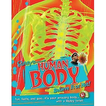 Ripley Twists: Human Body Portrait Edn