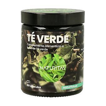 Thé vert 120 capsules