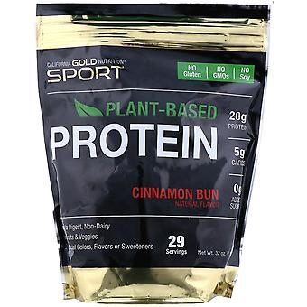 California Gold Nutrition, Cinnamon Bun Plant-Based Protein, Vegan, Easy to Dige
