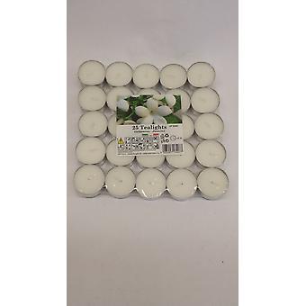 Preis Kerzen Teelichter Pack 25 Jasmin