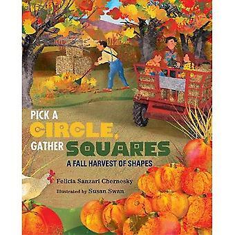 Pick a Circle, Gather Squares