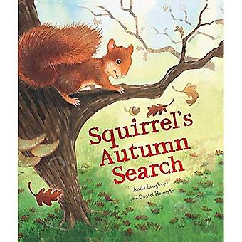 Recherche d'automne de l'écureuil
