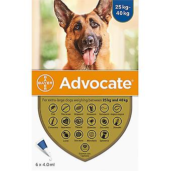 Advantage Multi (Advocate) Dogs Over 55lbs (25kg) - 6 Pack