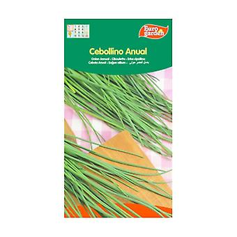 Annual Chive Seeds 2 g