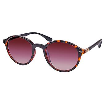 Sunglasses Unisex brown with brown lens (ml6623)