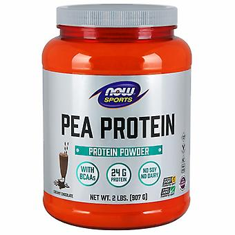 Now Foods Pea Protein, Dutch Chocolate, 2 lbs