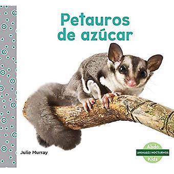Petauros De Azucar / Sugar Glider (Animales Nocturnos / Nocturnal animales)
