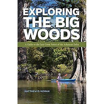 Verkennen van het grote bos: een gids voor het laatste grote bos van de Arkansas-Delta