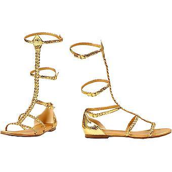 Shoes Cairo Gladiator Gd Sz 6
