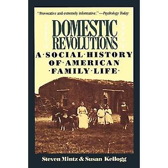Binnenlandse revoluties A Social History of American Family Life door Mintz & Steven