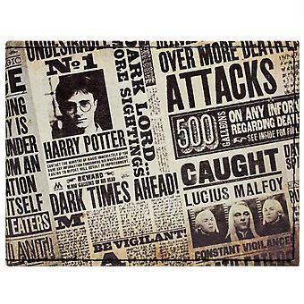 Warner Bros Harry Potter Tabloid ID & Card Bi-Fold tegnebog