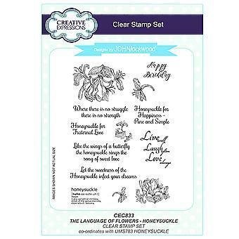 Langage de Expressions créatives John Lockwood des fleurs A5 Clear Stamp Set - chèvrefeuille CEC833