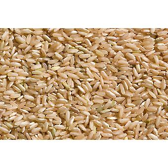 Organic Rice Long Grain Brown -( 22lb )