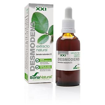 Soria Natural Extract from Desmodens Siglo XXI