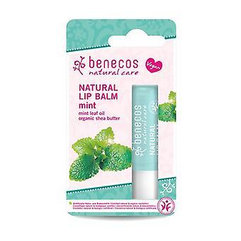 Organic Mint Lip Balm 1 unit (Mint)