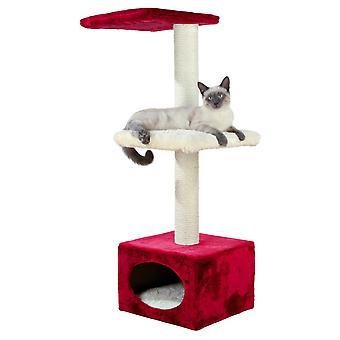 وظيفة خدش القطة إيلينا Trixie