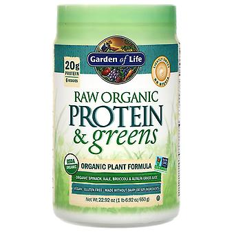 Garden of Life, RAW Protein & Greens, Organic Plant Formula, Lightly Sweet, 22.9