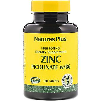 Nature's Plus, Zink Picolinat w/B-6, 120 Tabletten